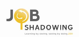 peace portal unoy peacebuilders job shadowing
