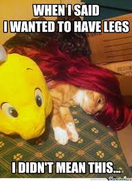 The Little Mermaid Memes. Best Collection of Funny The Little ... via Relatably.com