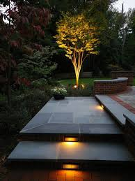 love the dramatic lighting of the tree awesome modern landscape lighting design ideas bringing