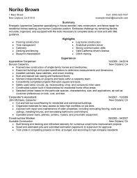 resume sample for plumber   sample cv for head nurseresume sample for plumber apprentice plumber resume sample my perfect resume apprentice carpenter resume example myperfectresume