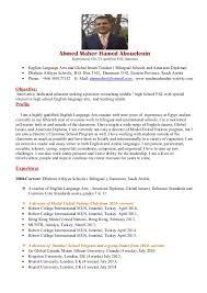Resume Example    Gumtree