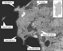 la flora vascolare della penisola del sinis (sardegna occidentale)