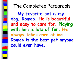 the five sentence paragraph a framework for paragraph writing  the completed paragraph my favorite pet is my dog romeo he is beautiful and