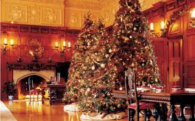 beautiful decorated christmas trees or by awesome and beautiful beautiful decorated christmas trees or by awesome and beautiful beautiful christmas decorations