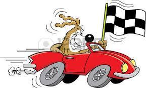 Risultati immagini per dog on racing  car
