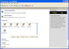 Software Developer Resume Sample  how to write software engineer