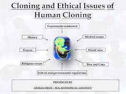 cloning and it    s ethical issues essay   student resume sample    cloning process history of cloning and ethical issues of human cloning