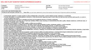 Oil And Gas Drafter CV Work Experience Soil And Plant Scientist Resume Work Experience Sample