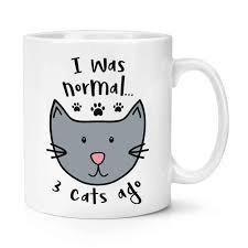<b>Я была нормальной</b>, 3 кота назад, кружка, Женская кофейная ...