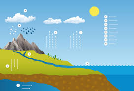 the water cycle com water cycle
