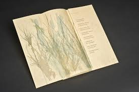 poetry archives piece is her use of poetry written by emily wilson alongside the visual images while book arts do not necessarily need to have type involved i