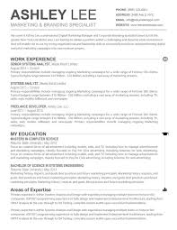 one page resume example single page resume template one page resume format one page one page resume template microsoft word