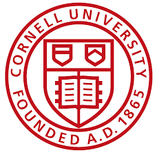 cornell admissions essay template cornell admissions essay