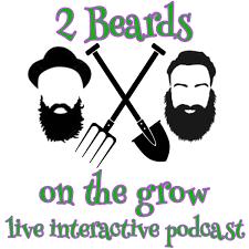 2 Beards on the grow