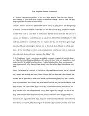 into the wild essay ap english essay response to into the wild   into the wild