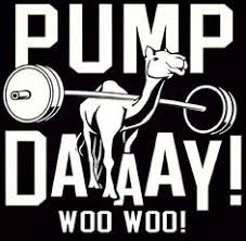 Image result for hump day fitness motivation