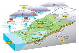 diagram of hydrological cycle   awesome earth  amp  space science    diagram of hydrological cycle