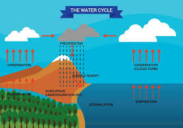 water cycle diagram vector   download free vector art  stock    water cycle diagram vector