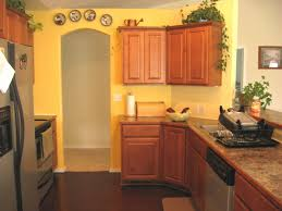 kitchens iwp homeowner irish country ideas