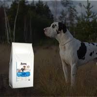 <b>Сухой корм Karmy</b> для собак – 22 товара | ВКонтакте