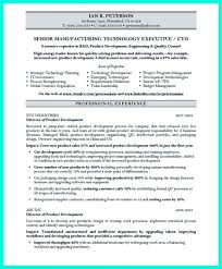 resume samples chief technology officer cto internet health what chief information officer resume sample