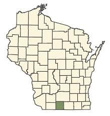 Rubus caesius - Online Virtual Flora of Wisconsin