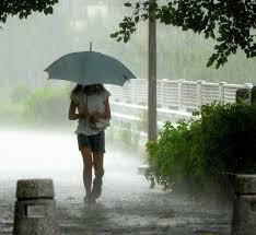 「豪雨」の画像検索結果