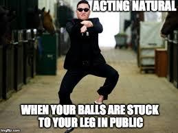 Psy Horse Dance Meme Generator - Imgflip via Relatably.com