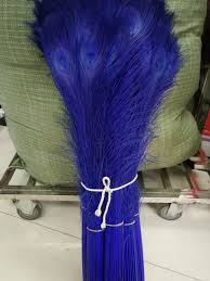 <b>wholesale</b> high quality 50pcs <b>rare natural</b> sapphire <b>peacock</b> feathers ...