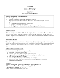 essay introductions samples pevita cover letter introduction to essay example good introduction to