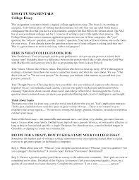 literature essay response essay example paper ap english essay literature essay response essay example paper ap english essay persuasive essay sample paper gre argument essay sample questions argument essay sample