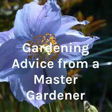 Gardening Advice from a Master Gardener