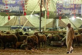 muslims around the world celebrate first day of eid al adha al a trip around the muslim world