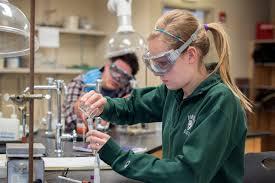 organic chemistry online com why sapling learning for online homework organic chemistry
