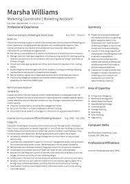Business Intelligence Analyst Resume   Resume Examples Brefash