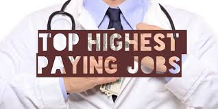 top highest and lowest paying jobs in america wage scout top 50 highest and lowest paying jobs in america 2017