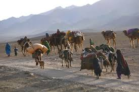 u s department of defense photo essay a nomadic afghan family moves back to golestan farah province 10