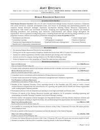 human resources resumes cipanewsletter sample asst hr manager resume format human resource manager hr