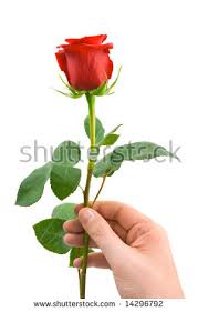 Image result for handing flower