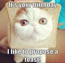 Funny Happy Birthdays on Pinterest | Funny Birthday Wishes, Happy ... via Relatably.com