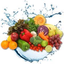 Resultado de imagem para frutas e agua