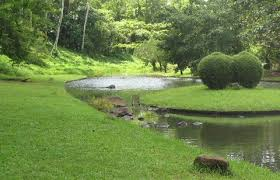 「ラグナ州カリラヤにある日本の戦没者慰霊碑」の画像検索結果