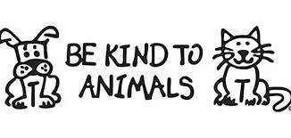 Image result for animal welfare photo