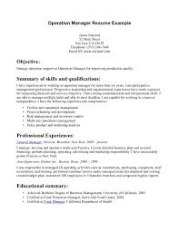 profile summary resume examples cipanewsletter cover letter summary of a resume examples examples of summary for