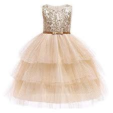 Baby Embroidered Formal Princess Dress for Girl ... - Amazon.com