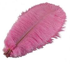 AABABUY Pack of 10,Naturl Ostrich Feathers 16-18inch (<b>40</b>-<b>45cm</b> ...