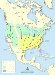 the declining monarch butterfly population government responses figure 1 monarch butterfly migration pattern in north america