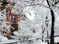 winter: лучшие изображения (112) в 2020 г. | Зима, Мужской ...