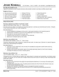 sales executive resume template | Template sales executive resume template