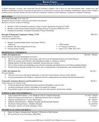 perfect your resume   infographic resume  designer resume template    professional curriculum vitae cv sample